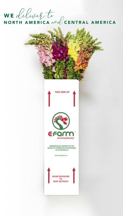 we delivery efarm white box shipping